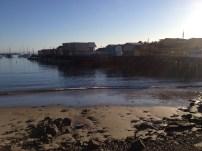 Monterey Beach 1