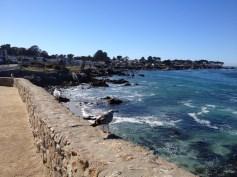 Monterey Beach 20