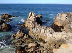 Monterey Beach 21