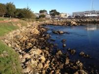 Monterey Beach 5