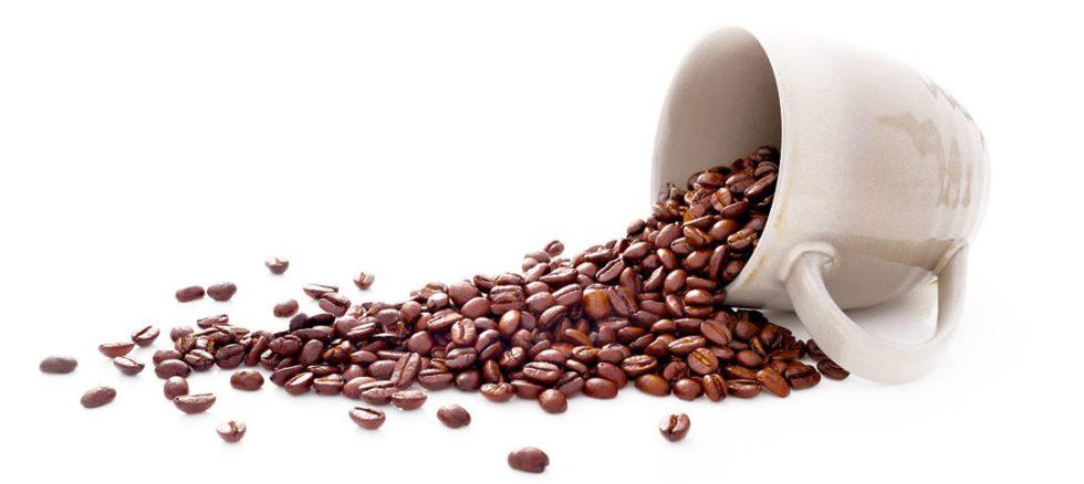 chicco-caffe-1080x483