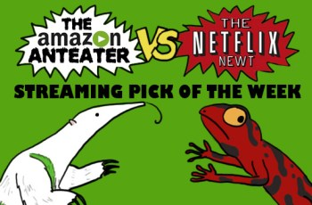 Amazon_V_Netflix_green