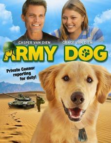 army-dog