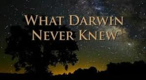 what darwin never knew