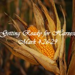 Getting Ready for Harvest Mark 4:26-29