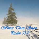 Whiter Than Snow Psalm 51:7