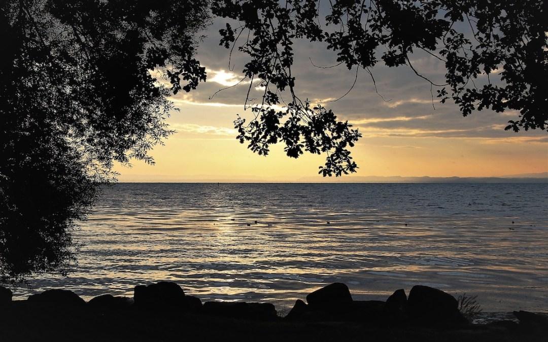 Silence You Need morning lake beach dawn