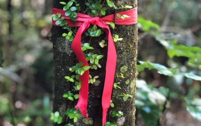 The Scarlet Ribbon of Redemption