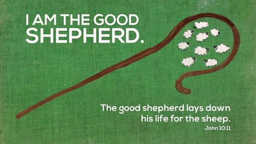 Sunday Sermon Good Shepherd