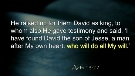 Acts 13:22.