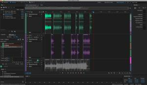 Software for Recording and Editing Church Sermons | pastorwill net