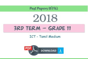 2018 Grade 11 ICT Third Term Test Paper | Tamil medium
