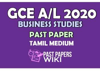 business studies PAST PAPER