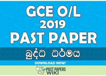2019 O/L Buddhism Past Paper | Sinhala Medium