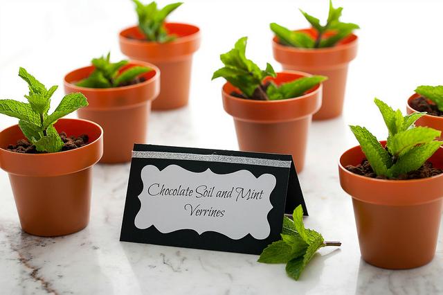 cherry chocolate verrines