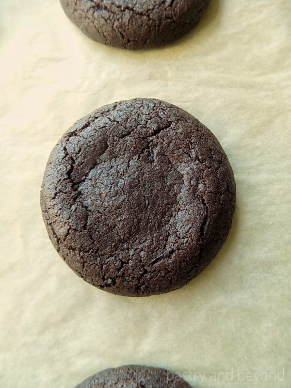 Baked moist chocolate cookies with cocoa powder.