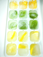 Lemon, orange, basil leaf flavored ice cubes in an ice tray.