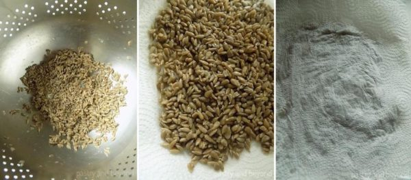 Sunflower seeds in a colander in the first picture, and then on a paper towel in the second picture and covered with a paper towel on the third picture.