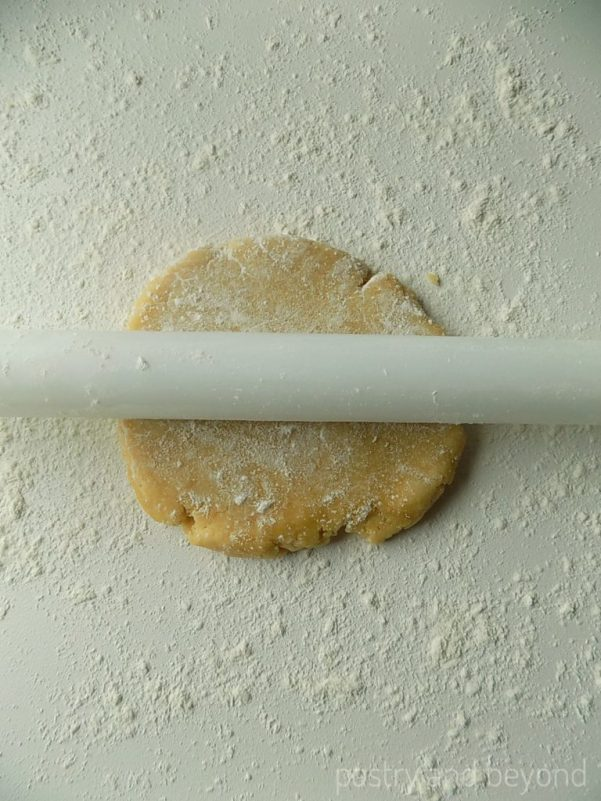 Dough on a lightly floured work surface with a rolling pin on top.