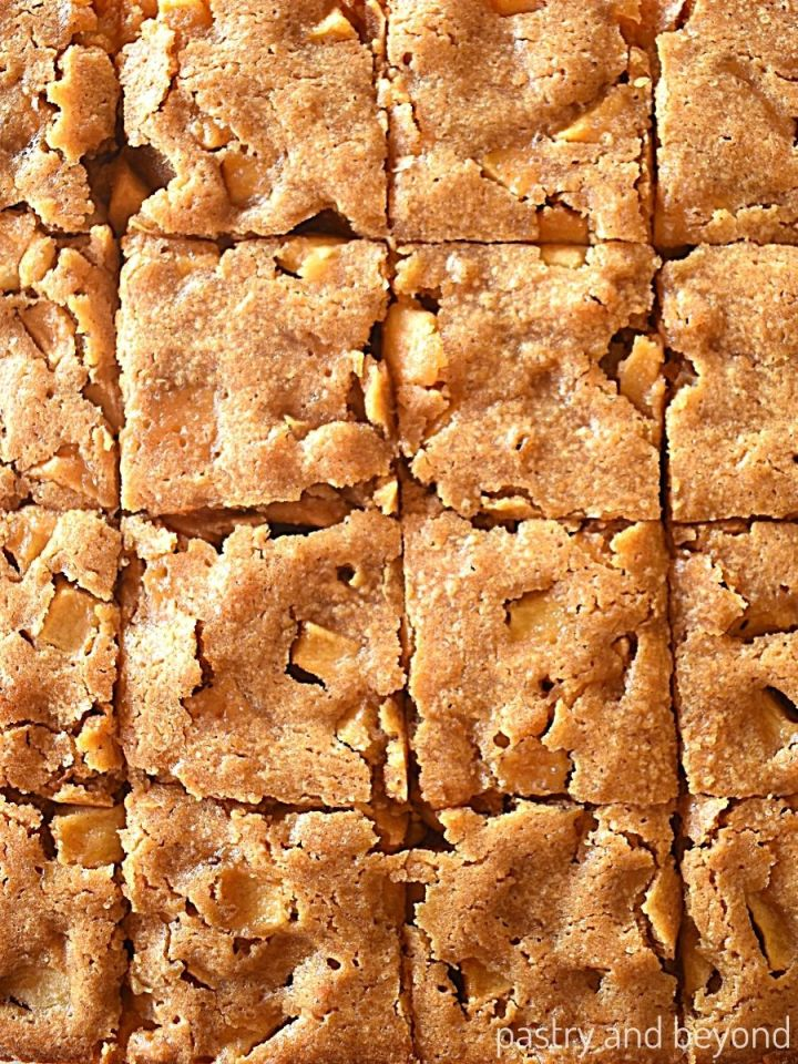 Blondie that is cut into 16 squares.