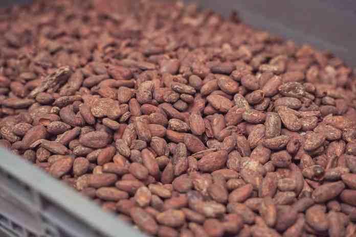 Republica del Cacao's Chocolate Factory in Ecuador