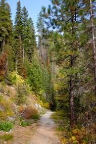 the start of Camas Creek Trail No. 125 up to Camas Lake Montana