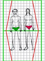 morphotype ascétique