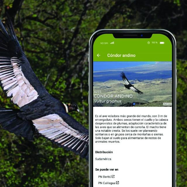 Imagen de la APP de Parques Nacionales