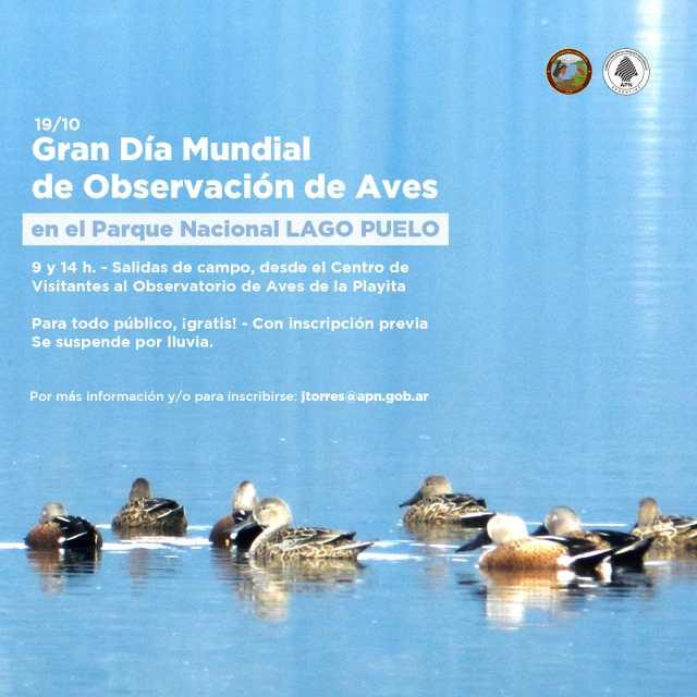 Gran Día de Octubre en el Parque Nacional Lago Puelo
