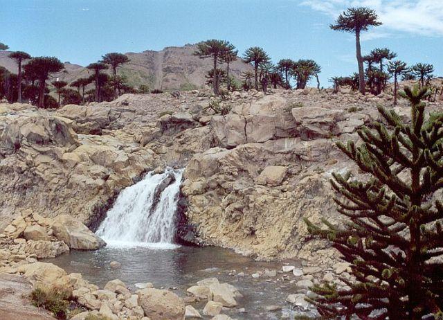 Cascada culebra, otra de las paradas obligadas del sendero de las cascadas de Caviahue.