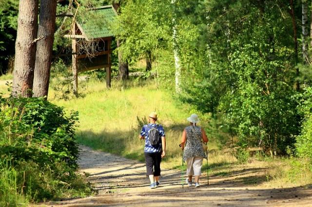 Pareja caminando por un sendero. El senderismo en la naturaleza y sus beneficios para la salud.