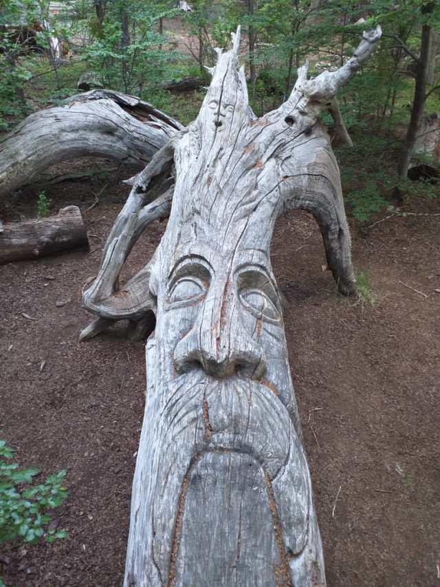 Escultura de un árbol anciano.