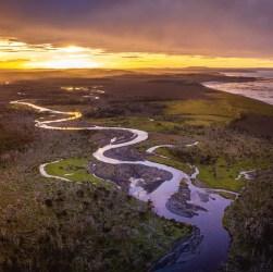Turbales, uno de los ecosistemas más importantes de la Patagonia.