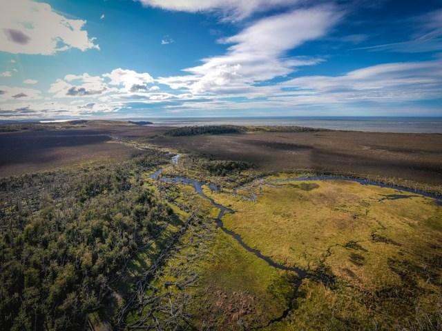 Uno de los ecosistemas más importantes de la Patagonia.