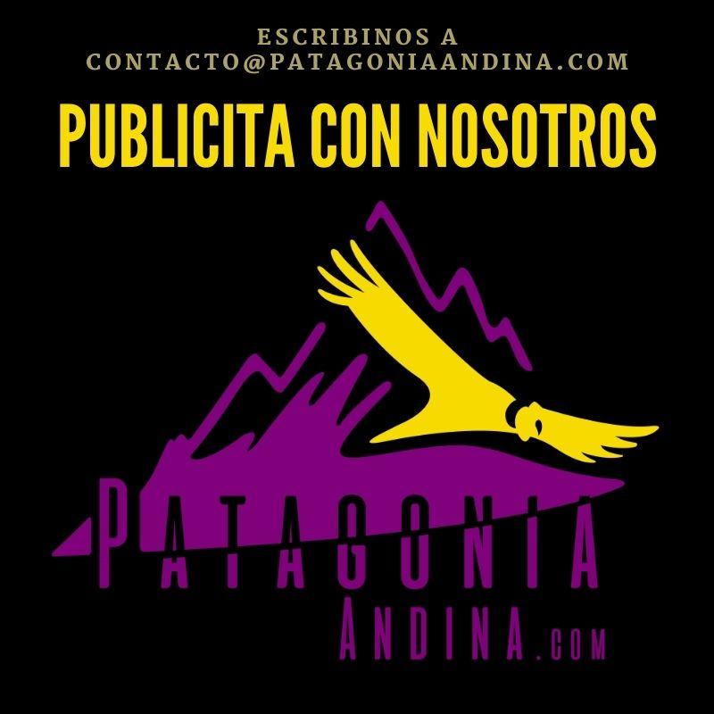 Publicidad Patagonia Andina