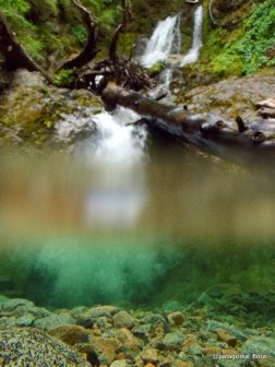 waterfall-in-nothofagus-forest-patagonia