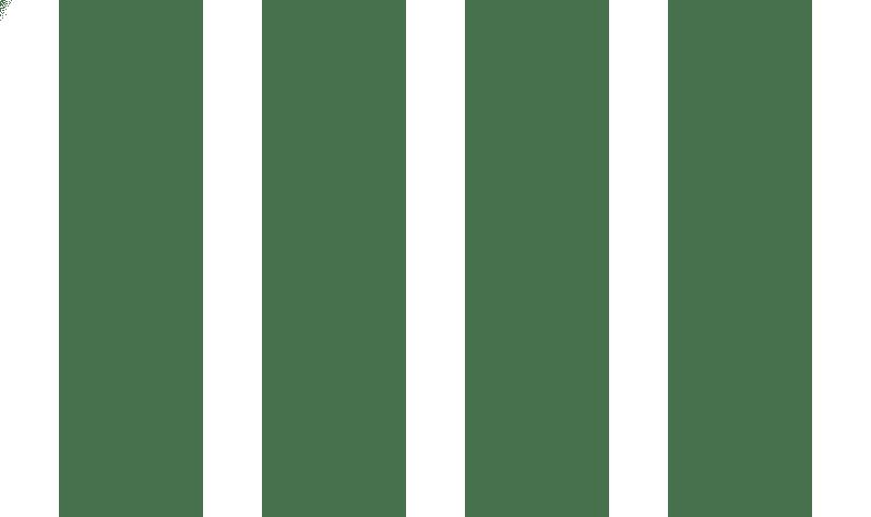 stripes bars style image