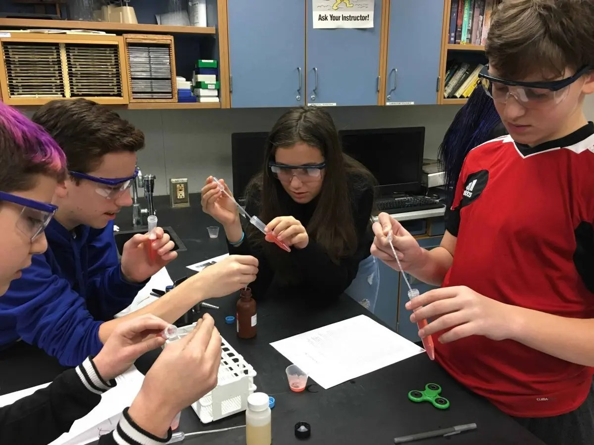 Rye Neck Middle School Students Study Their Dna