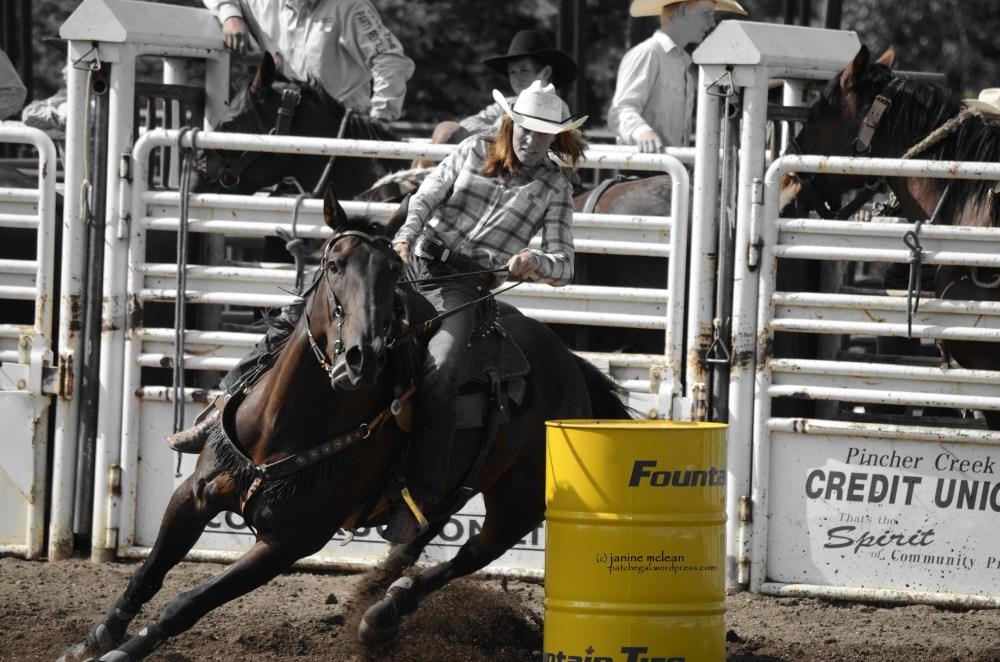 Cowboy (or Girl) up (4/6)