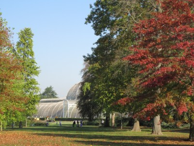 Behind the Palm House, Kew by Allison Reid