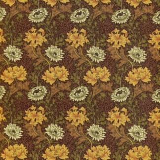Chrysanthemums - Brown