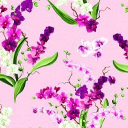 Orchid Fancy Y2946-121 Orchid