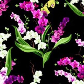 Orchid Fancy Y2946-3 Black