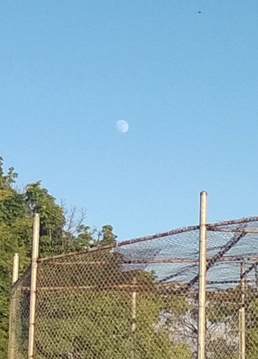 spontaneous snap of the moon