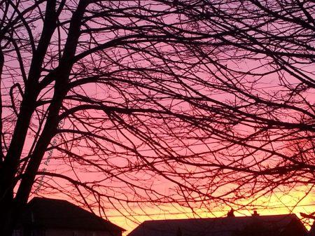 Dec sunset 4 58a