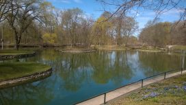 spring at Dufferin Islands
