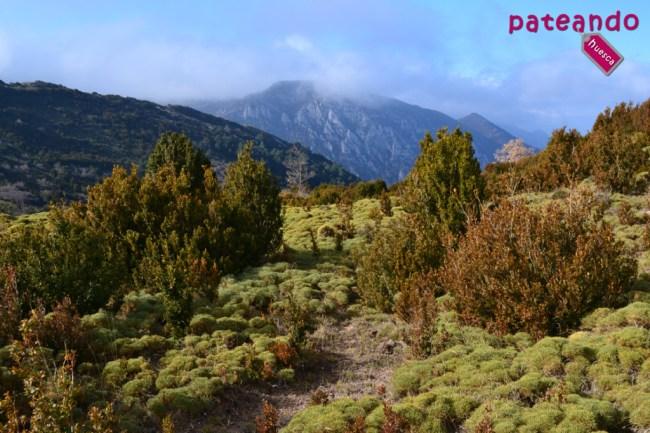 Pico Peiró desde la Sierra de Bonés