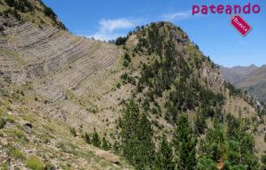 Punta del Águila