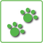 footpad-e1379471739917