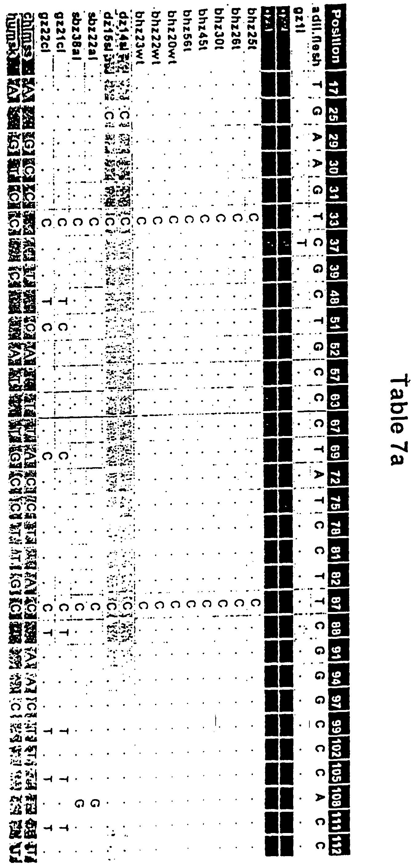 Wrg Vrsshl 021